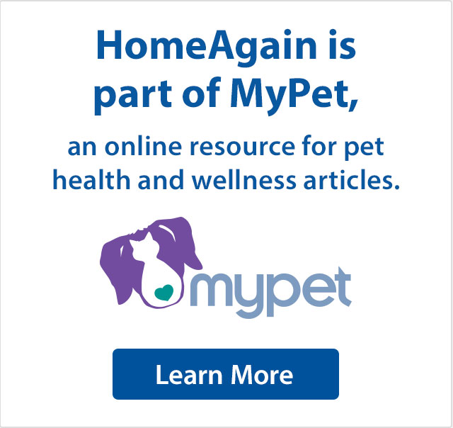 HomeAgain is part of MyPet